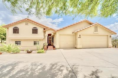 Pima County, Pinal County Single Family Home Active Contingent: 7390 E Knollwood Drive