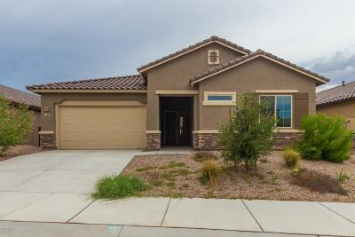 Marana Single Family Home For Sale: 11083 Fountain View Drive W