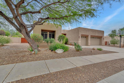 Oro Valley Single Family Home Active Contingent: 11718 N Desert Holly Drive
