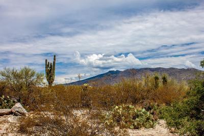Residential Lots & Land For Sale: 11231 E Placita Rancho Grande #5