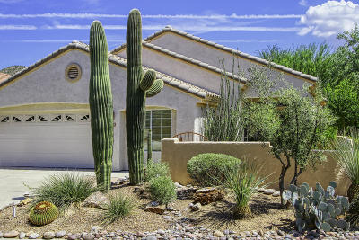 Pima County Single Family Home For Sale: 13718 N Wild Hazel Lane