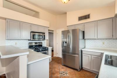 Pima County Single Family Home For Sale: 7421 S Vista Del Arroyo
