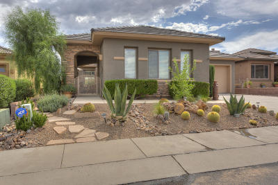 Pima County Single Family Home For Sale: 2101 W Escondido Canyon Drive