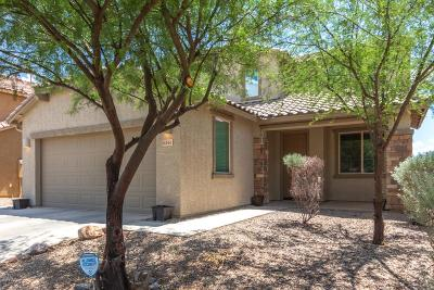 Pima County Single Family Home For Sale: 6461 W Wolf Valley Way