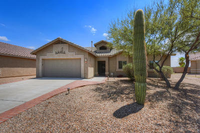 Pima County Single Family Home Active Contingent: 5273 W Wild Burro Spring Drive
