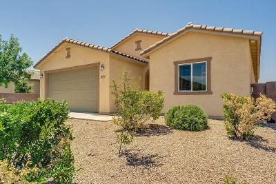 Valle Single Family Home Active Contingent: 17364 S Painted Vistas Way