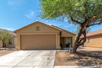 Tucson Single Family Home For Sale: 6820 S Cottontail Run Avenue