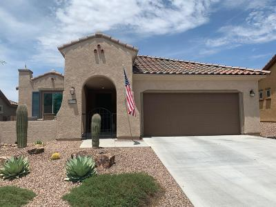 Marana Single Family Home For Sale: 14059 N Del Webb Trail