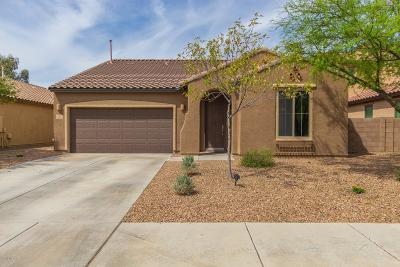 Marana Single Family Home For Sale: 12613 N Greenberry Drive