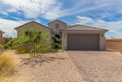 Single Family Home For Sale: 11772 N Renoir Way N