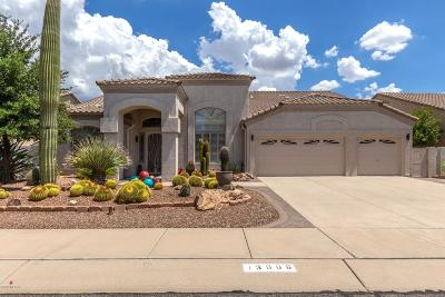 Oro Valley Single Family Home For Sale: 13006 N Whitlock Canyon Drive