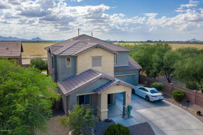 Marana Single Family Home For Sale: 12981 N Fox Hollow Drive