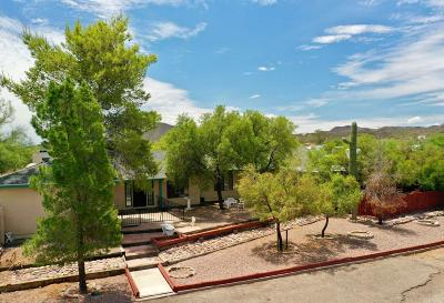 Pima County, Pinal County Single Family Home For Sale: 3651 W Ironwood Hill Drive