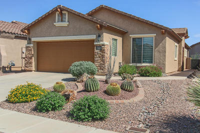 Sahuarita Single Family Home For Sale: 258 W Calle Del Estribo