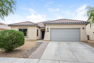 Pima County Single Family Home For Sale: 11041 W Case Way