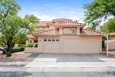 Oro Valley Single Family Home For Sale: 11731 N Dragoon Springs Drive