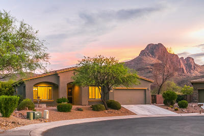 Tucson Single Family Home Active Contingent: 8449 N Ironwood Reserve Way