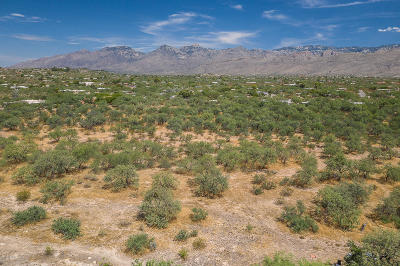 Tucson Residential Lots & Land For Sale: 10495 E Tanque Verde Road