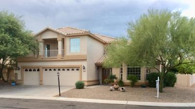 Oro Valley Single Family Home For Sale: 10736 N Torey Lane