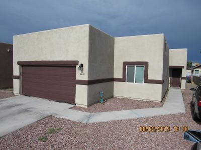 Tucson Single Family Home For Sale: 5281 S Caitlin Way