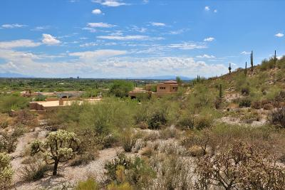 Tucson Residential Lots & Land For Sale: 6036 E Roadrunner Haven Place #124