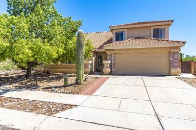 Tucson Single Family Home For Sale: 4524 W Lord Redman Loop