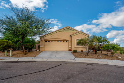 Marana Single Family Home For Sale: 14397 N Bannerstone Court
