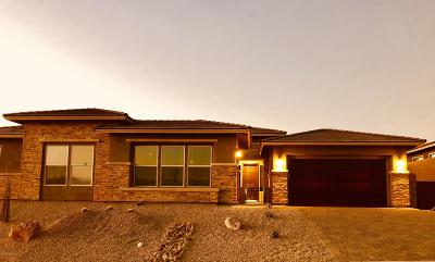 Pima County Single Family Home For Sale: 7044 W Turquoise Hills Place