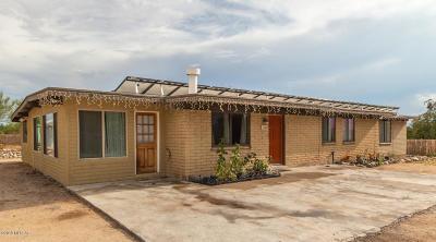 Single Family Home For Sale: 220 E Catalina Shadows Boulevard