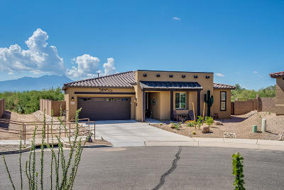 Sahuarita Single Family Home Active Contingent: 18184 S Peaceful Meadow Court