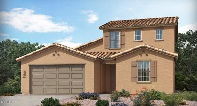 Vail AZ Single Family Home For Sale: $363,990