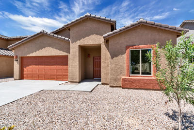 Pima County Single Family Home For Sale: 6365 E Koufax Lane