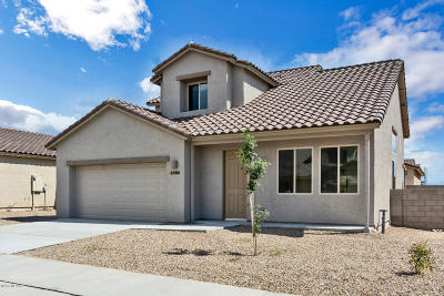 Pima County Single Family Home For Sale: 6386 E Boldin Drive