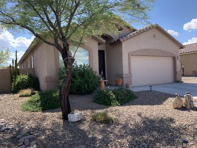 Marana Single Family Home For Sale: 14245 N Bronze Statue Avenue