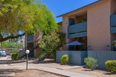 Pima County, Pinal County Condo Active Contingent: 8080 E Speedway Boulevard #206