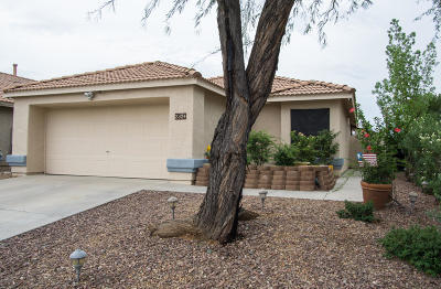 Oro Valley Single Family Home For Sale: 2324 E Mortar Pestle Drive