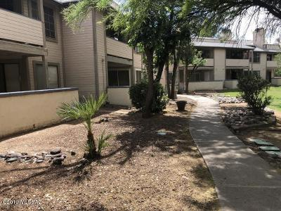 Pima County, Pinal County Condo For Sale: 1701 W Wood Bridge Court