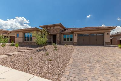 Tucson Single Family Home For Sale: 875 W Corax Way