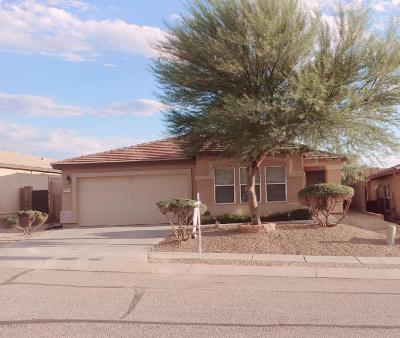 Pima County Single Family Home For Sale: 13642 E Hampden Green Way