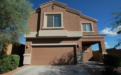 Pima County Single Family Home For Sale: 8752 N Black Pine Drive