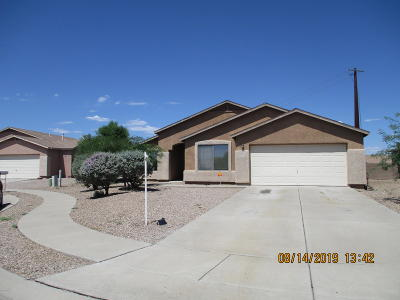 Tucson Single Family Home For Sale: 5077 E Butterweed Drive