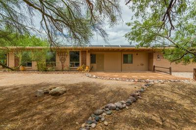 Tucson Single Family Home For Sale: 10249 E Placita Cresta Verde