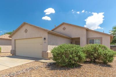 Tucson Single Family Home For Sale: 6424 E Nelson Drive