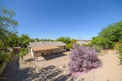 Tucson Single Family Home For Sale: 9991 E Watson Drive