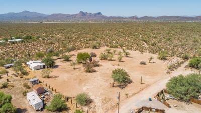 Residential Lots & Land For Sale: 6161 W Desert Marigold Lane