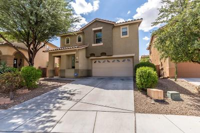 Single Family Home For Sale: 1663 W Gentle Brook Trail