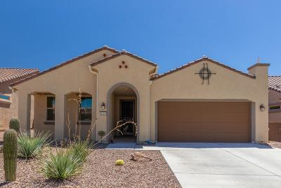 Marana Single Family Home For Sale: 14192 N Lava Falls Trail