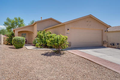 Single Family Home For Sale: 10142 E Desert Gorge Drive