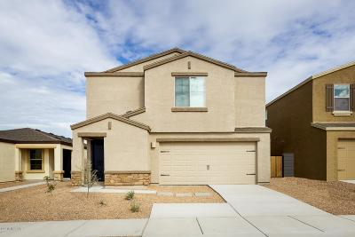 Pima County Single Family Home For Sale: 5984 S Antrim Loop