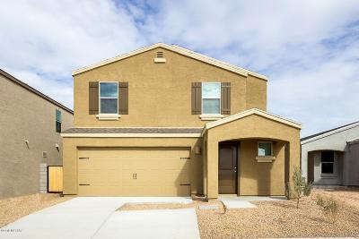 Pima County Single Family Home For Sale: 6013 S Zell Court